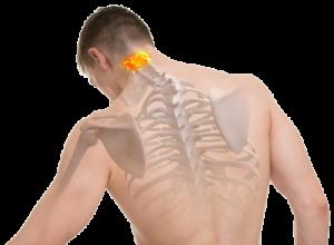 Vitalogie in Köln gegen Rückenschmerzen